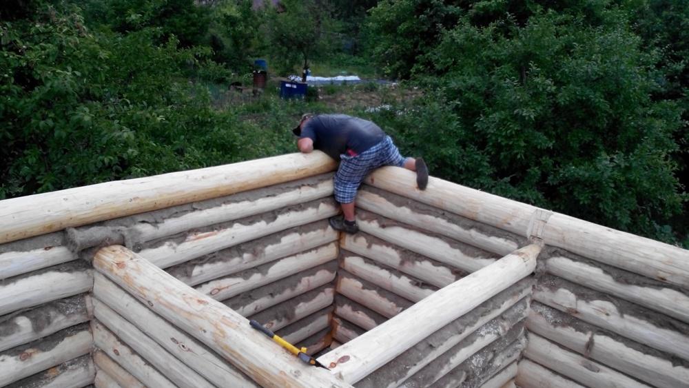 Как отбелить древесину своими руками 61